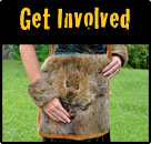 Righteous Fur Nutria: Get Involved